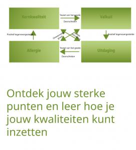 pbop_Kernkwalieiten_v1