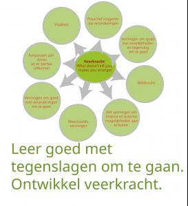 pbop_veerkracht_v1